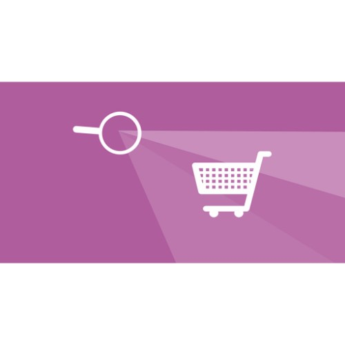 Woocommerce Platform: The free E-commerce add-on for WordPress